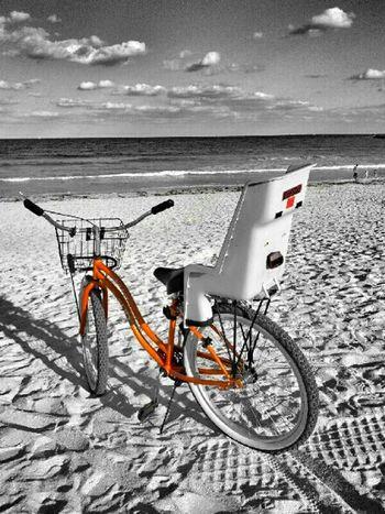 EE_Daily: Orange Tuesday
