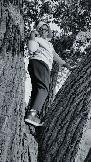 Low angle view of boy standing on tree trunk at promontory point park