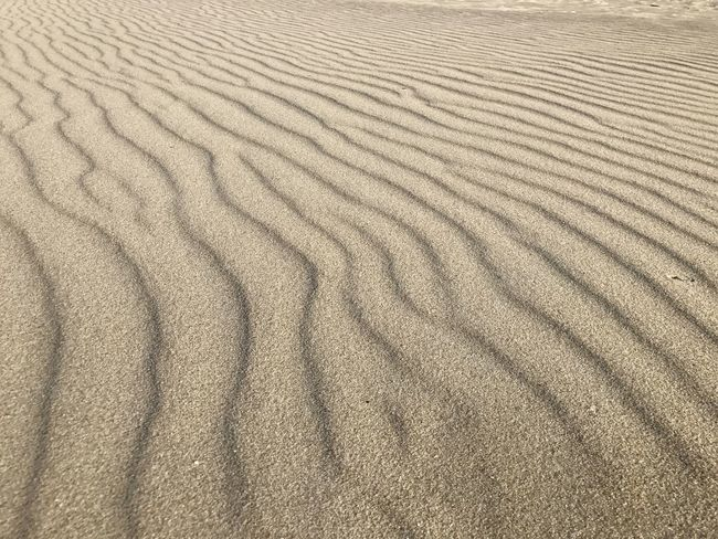 Backgrounds Beach Close-up Day Desert Dune Full Frame Nature No People Outdoors Pattern Patterns Sand Sand Dune Structure Textured  Wave Pattern Waves Wind