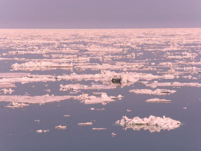 Day Floating Ice Ice Idyllic Nature No People Outdoors Scenics Sea Tranquil Scene Tranquility Water