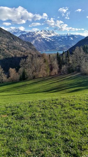 Interlaken Bernese Oberland Switzerland Landscape Eye4photography  Bench With A View Berner Oberland Mountain Grass Sky Green Color Farmland Grassland