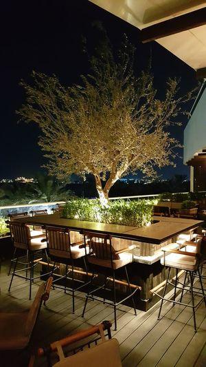 Olive Tree Bar Barrestaurant Hospitality Nightlifephotography