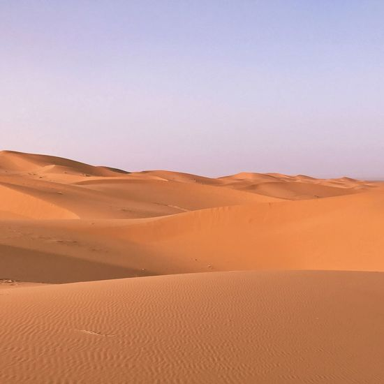 Sahara Desert Sand Landscape Land Scenics - Nature Environment Sky Nature Clear Sky Tranquility Travel Desert Nature