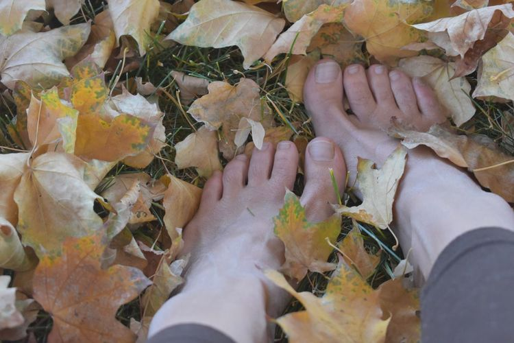 Relaxing in nature with feet in the leaves Autumn Autumn Collection Earth_Collections Fall Colors Falling Leaves Woman Autumn Colours Barefoot Change Of Seasons Concepts & Topics Fall Leaves Feet On The Ground Feet Selfie Ground In The Grass Leaves Looking At Natural Lifestyl Nature Natures Beauty Outdoors Season Images Backgrounds Seasonal Toes Womans