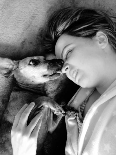 Kisses from a dog. Bestfriend Ilovemydog Friends Friendship Black And White Blackandwhite Blackandwhite Photography Dog Love Licking Nose Licking Dachshund Dogs Of EyeEm Sausagedog Dogslife Kisses Kiss Morning Rituals Domestic Headshot Pets Bonding Togetherness Portrait Dog Pet Owner Positive Emotion Canine Love