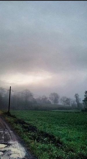 Glum Gloomy Morning Dawn Clouds Fog Foggy Foggy Morning Lane Rural Potholes Puddle Field Sad Calm Serenity