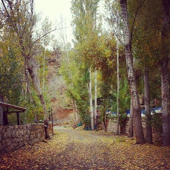 Sonbaharın son demlerinde Tunceli ...