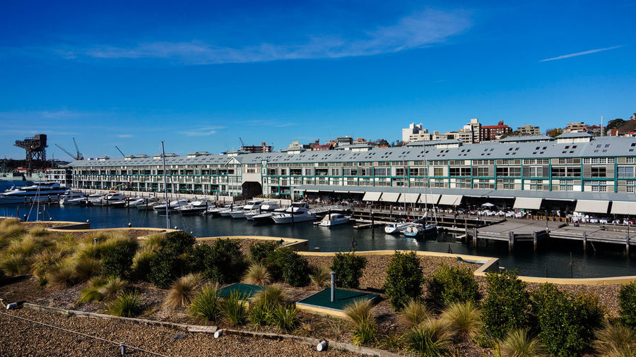 The Finger Wharf at Woolloomooloo Bay Architecture Blue Building Exterior Built Structure City Day Marina Nautical Vessel No People Outdoors Sky Tree Water Yachts
