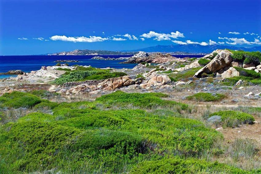 Nature Landscape Arcipelagodellamaddalena Travel Destinations EyeEm Best Shots EyeEm Best Edits