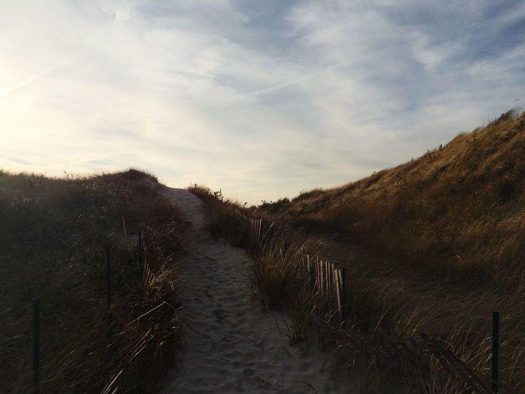 New England  Beach Landscape Ocean Vscocam