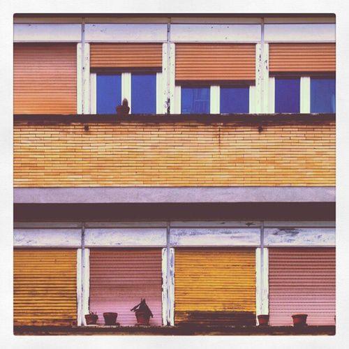 Roma Officefotograficheroma Villaggioolimpico