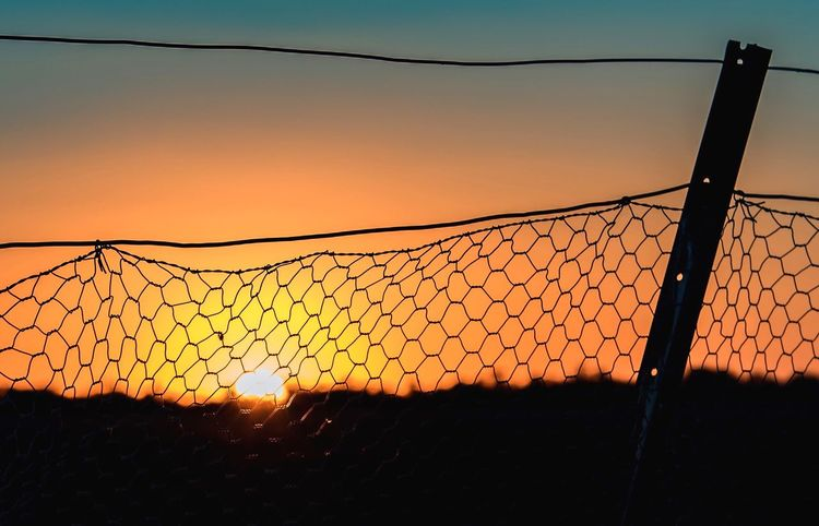 Through the boundary fence Farmlife Rural Photography Orange Color Net - Sports Equipment Visual Creativity