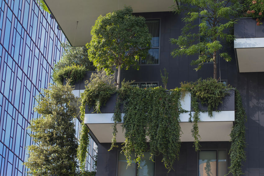 Centro Direzionale Milano Italy Architecture Built Structure Green Color Lombardia Nature Plant Tree Vertical Forest