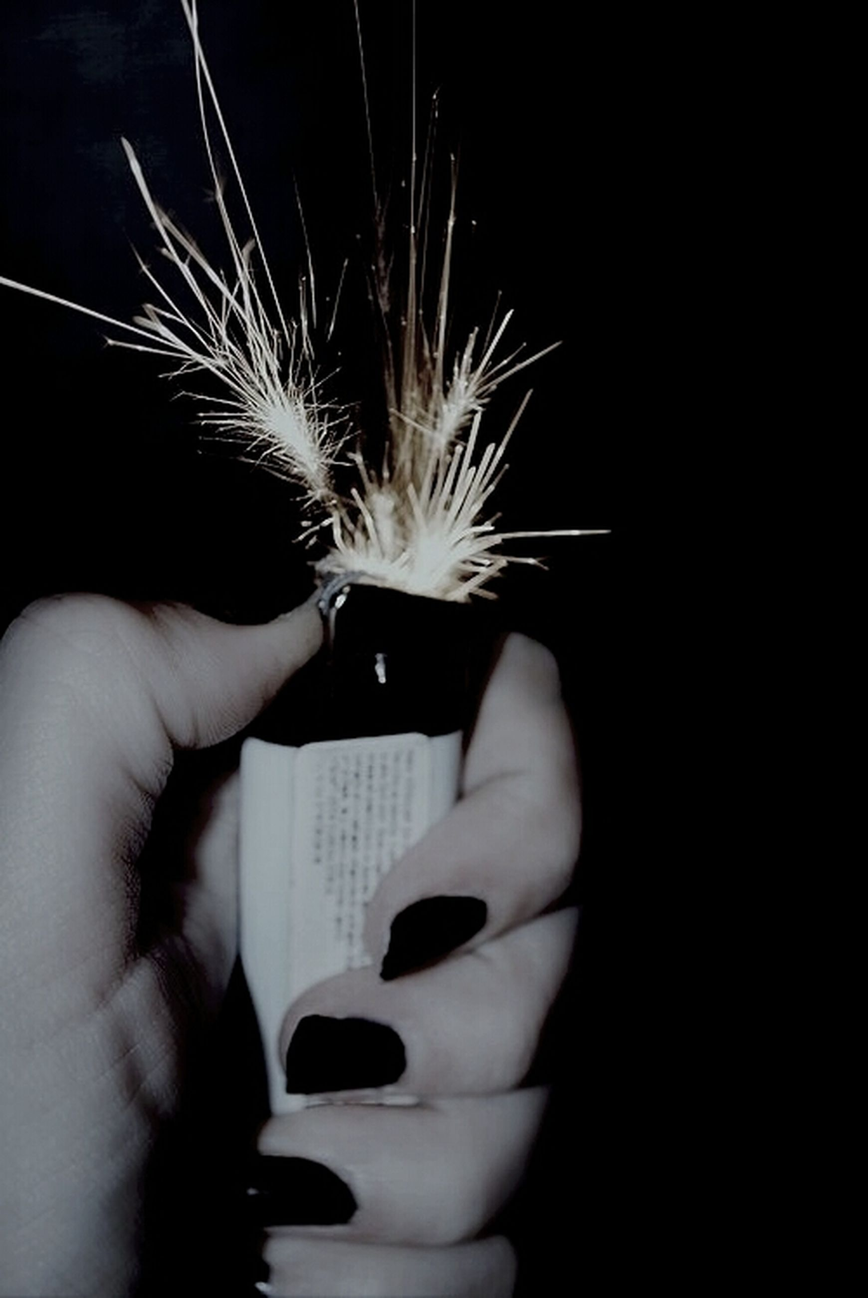 person, holding, lifestyles, part of, leisure activity, cropped, human finger, unrecognizable person, close-up, dandelion, night, flower, studio shot, men, focus on foreground, human hair