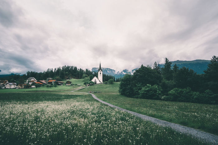 Swiss village with a white church on a cloudy day in summer Alps Bad Weather Church Cloudy Cloudy Day Dandelion Dandelions Flowers Graubünden Green Green Color Green Field Green Grass Peaceful Rainy Schweiz Suisse  Summer Summertime Svizzera Swiss Swiss Alps Switzerland Tranquility Versam
