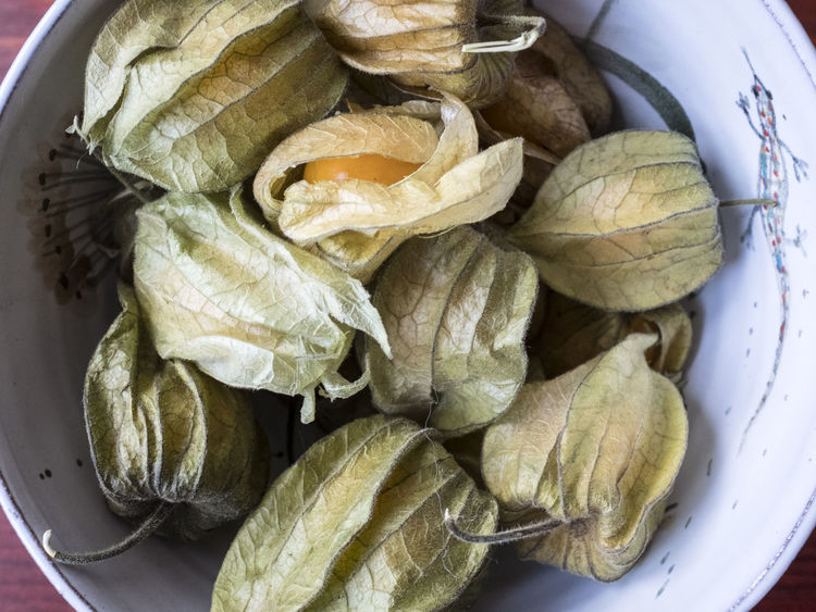 Physalis Exotic Fruit Northern America Physallis Authentic Exotic Fruit Bowl Exotic Fruits Fruit Gooseberry Husky Inca Berry Kitchen Physalis Physalis Fruit Physalis Peruviana Vitamin C