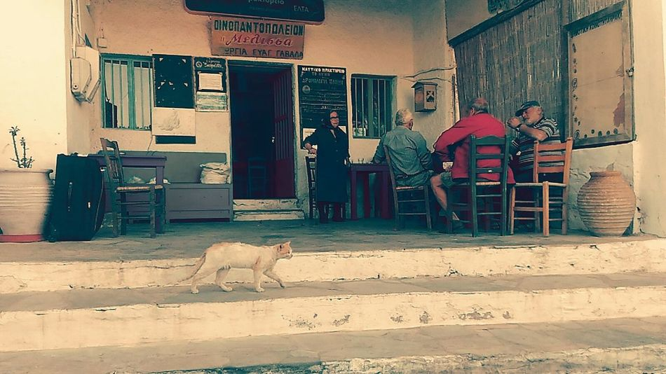 People Watching Grecia Greece People Photography Greek People Real People Real Life Situation