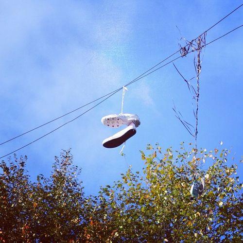 Hanged Shoes Dublin