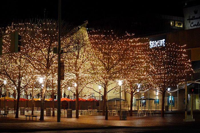 Illuminated Night Outdoors Tree Sky Kansas City Crown Center Plaza, Kansas City, MO Arts Culture And Entertainment City Sea Life