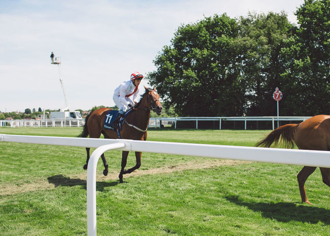 Animal Themes Competition Day Domestic Animals Epsom Downs Racecourse Field Full Length Grass Headwear Horse Horse Racing Horseback Riding Jockey Leisure Activity Lifestyles Livestock Mammal Nature Outdoors People Real People Riding Sky Sport Tree