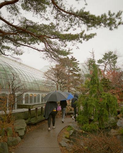 Rear view of women walking on wet rainy day
