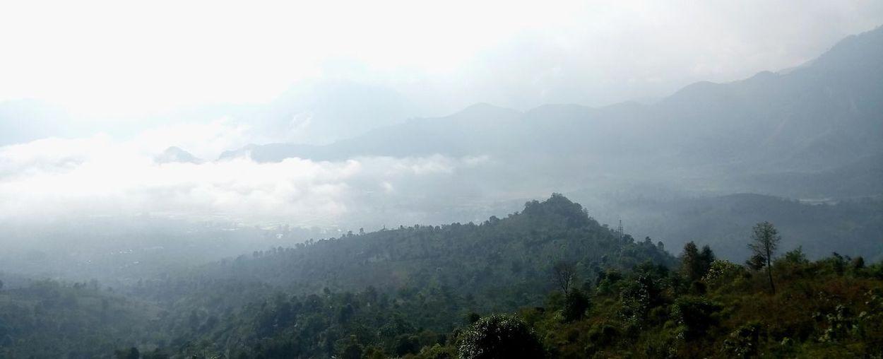 Day Fog Forest Freshness Landscape Mountain Mountain Range Nature No People Outdoors Sky Weather Đèo Tằng Quái - Sơn La