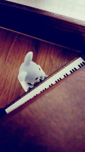 Rabbit Little Doll Cute Playing The Piano
