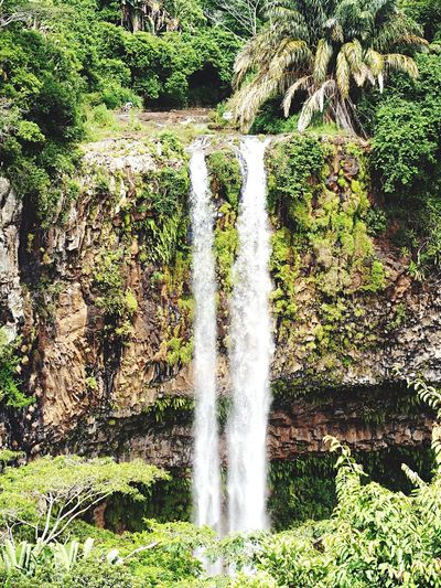 Waterfall Water Plants Green Colorful Colors Nature Silent Moment Check This Out Enjoying Life The Week Of Eyeem Beautiful Inspiring Everyday Joy Daylight Silence Daydreaming Showcase: February Dreaming Magic Moments Photography Taking Photos Magical Mountain Elements