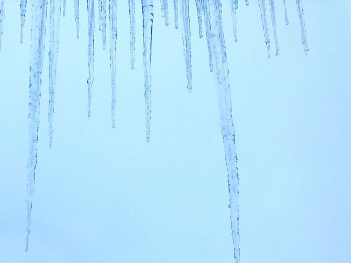 Close-up of icicles on snow covered land