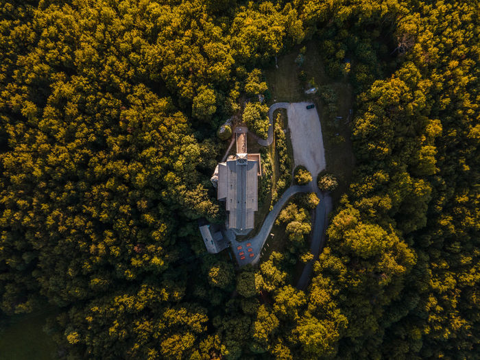 Aerial view of building amidst trees