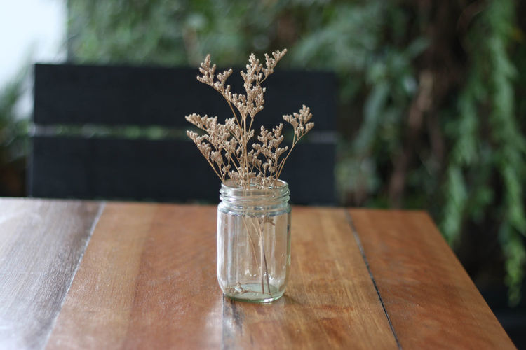 Beauty In Nature Cafe Close-up Day Flower Freshness Horizontal Indoors  Jar Mason Jar Nature No People Table Wood - Material