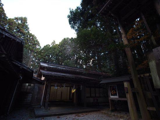 2017.12.17 #秋葉神社 #下社  昨日、秋葉神社に行っていた。 早朝に着いて、あまりに早すぎるので、7:00まで車で待機。 その後、下社→上社と撮って行った訳ですけど、その中の一枚にV字型の光が写っています。 恐らくは、タイミング良く飛んできた木の葉に光が当たっただけだと思います。 でも、拡大すると神聖な光のようにも見えるので、拡散いたします。 年末の慌ただしいこの時期、何事もなく乗り越えられるよう、そして来年も良い年であることを祈ります。 もし万一、何らかの厄災があっても乗り越えられますように。 Day No People History Building Exterior Tree Built Structure Architecture 秋葉神社