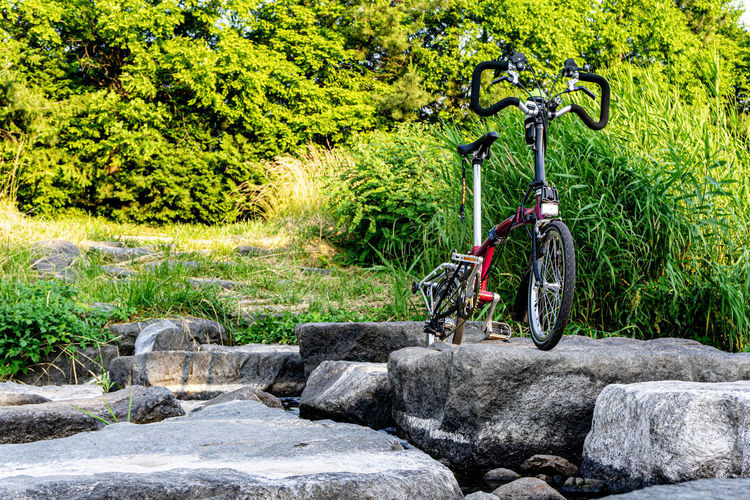 Bicycle on rock against trees in garden
