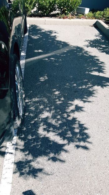 Total eclipse shadowa Total Eclipse Of The Sun Shadow Sunlight Day Outdoors No People Nature canada