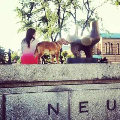 Animal Themes Architecture Built Structure Day Dog Domestic Animals Girl Low Angle View Mammal Neu Neuenationalgalerie No People Outdoors Sky Sunlight Tree