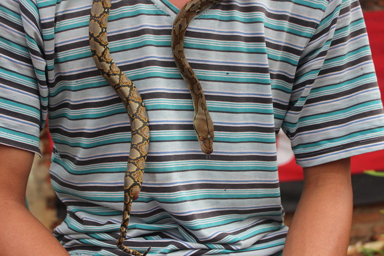 Midsection of man with snake