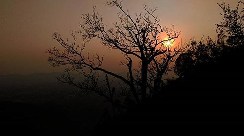 Leaf less tree........ Sunset Katra Jammu Kashmir J &k Vaishnodevi Mata Religious  Spiritual Trekking Himalayas Indianhimalayas India Instadaily Picoftheday HTC LEAFLESSTREES Leaf Tree Shadow Sundown Ankitdogra