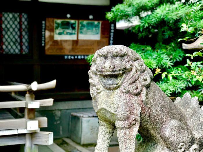 狛犬コレクション Japanese Shrine Gurdian Dogs EyeEm Best Shots EyeEm Sculpture Day Statue Representation Focus On Foreground Human Representation Art And Craft No People Outdoors