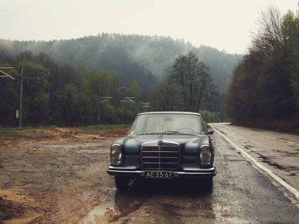 In Belgium's Ardennes. Stopped to make a photo. Belgium Mood Ardennes Mercedes Mode Of Transportation Transportation Land Vehicle Tree Motor Vehicle Car Summer Road Tripping Vintage Car Landscape Fog Road Summer Road Tripping Summer Road Tripping