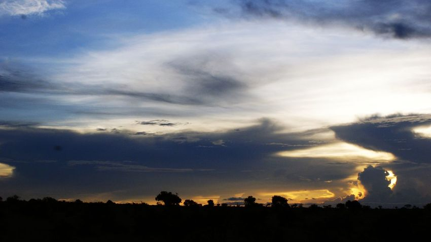 Africa Kenya Tsavo Est Nature Tree Sky Cloud On Moves Sunset Tourism Cloud - Sky Silhouette Tranquility Landscape Environment Horizon Dark Sunlight