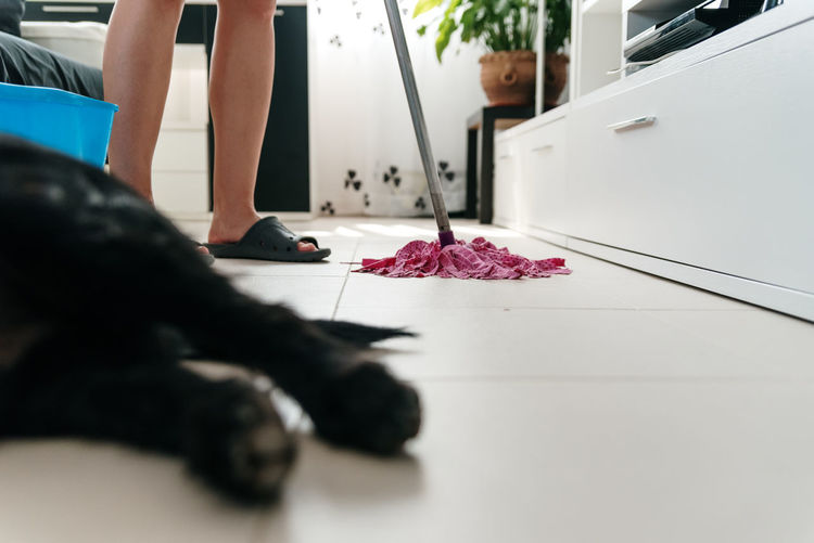 Low section of man with flower petals on floor