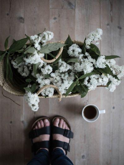 Birkenstock Standing Flower Jasmin Flowers Basket Basket Full Of Flowers Coffee Coffee Time Coffee Break