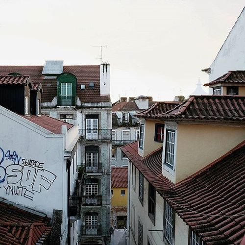 above the rooftops of Lisboa Shybuildings ____________________________________