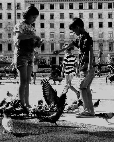 #pigeons #birds #kids #kids Playing #barcelona #spain #plaza #palace #Contrast #blackandwhite Full Length City Togetherness Young Women Men Women First Eyeem Photo