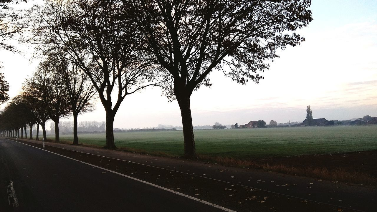 Edited Countryside Acker Field Reduzierte Farben Nebel Fog Daylight Tageslicht Winter Morning Morgens Cold Edited Filter Nature Landschaft Landscape Road Straße Trees Bäume Countryside Outside Land Redmi Note 4x Shot Reduced Colors Foggy Country Road Empty Road