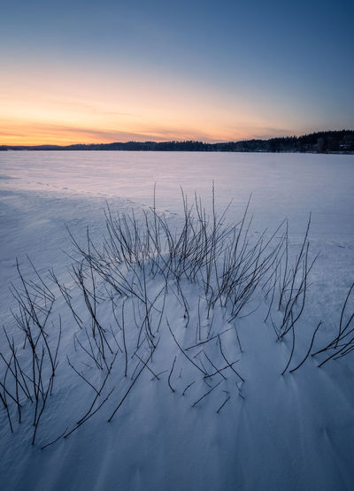 Scenic winter landscape with sunset and snow at evening in Finland Blue Moment Calm Finland Frost Moment Of Silence Sunset_collection Tranquility Travel Twilight Beauty In Nature Cold Temperature Covering Frozen Landscape Nature No People Non-urban Scene Scenics - Nature Season  Snow Sunrise Sunset Tranquil Scene Tranquility Winter