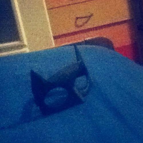 Batman Batgirl Carneval
