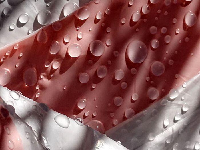 splash Water Drop Red Liquid Full Frame Close-up
