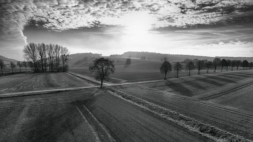 Couldn't decide which one looks better, BW or color. So here is the BW one. 🔲 Gandersheim Gan Roswithastadt Bw Black & White Dji DJI Phantom 4 Dji Phantom Phantom 4 Skyporn Cloudporn HDR © MJ ® Outdoors Landscape Nature Tree Cloud - Sky Real People Men Beauty In Nature Only Men People My Year My View