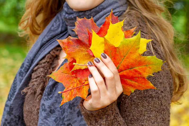 Young woman with colorful autumn leaves in the hand Faith Hope Lifestyle November Autumn Beautiful Woman Beauty Change Clothing Color Colorflash Depression - Sadness Environment Hair Hand Health Healthy Holding Leaf Maple Leaf Nature Oktober Outdoors Scarf Season